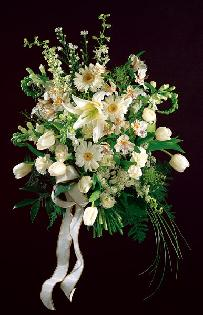 Cascading Bridal Bouquet, Tulips, Gerbera Daisies, Delphinium, Snapdragons...